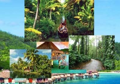 Athithi_Travels